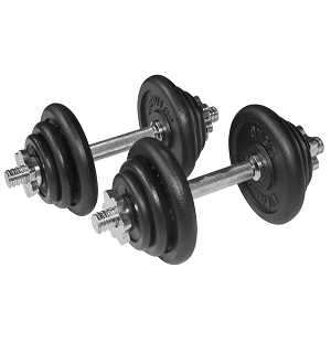 Cast Iron 20kg Dumbbell Fitness Exercise Home Gym Bicep Set with Case